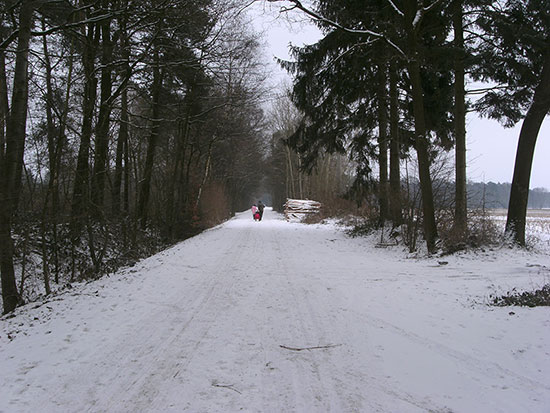 Winter in Coesfeld